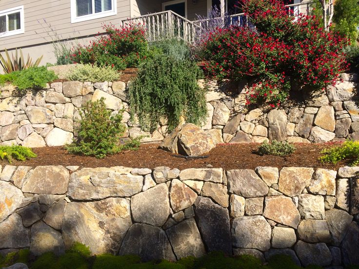 Landscaping Stones Windsor : Best images about braunstein back on