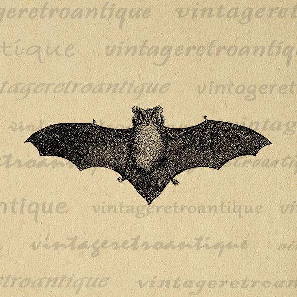 Printable Digital Antique Bat Image Halloween Download Graphic Vintage Clip Art Jpg Png Eps Print 300dpi No.450 @ vintageretroantique.com #DigitalArt #Printable #Art #VintageRetroAntique #Digital #Clipart #Download #Vintage #Antique #Image #Illustration