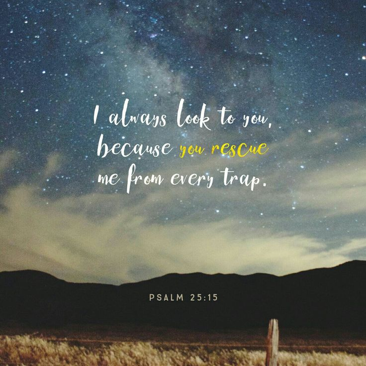 Mine eyes are ever toward the Lord ; for he shall pluck my feet out of the net. Psalms 25:15 KJV http://bible.com/1/psa.25.15.KJV