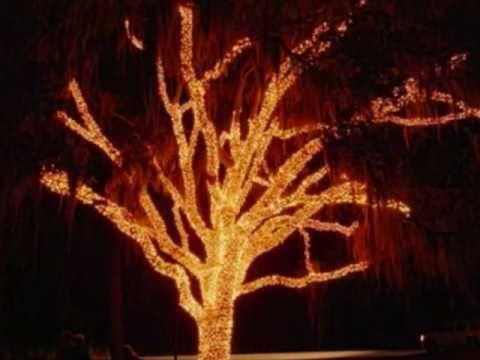 Stephen Foster Park's Christmas Light Festival