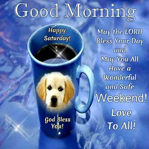 Good Morning Happy Saturday Have A Wonderful Safe Weekend weekend good morning saturday saturday quotes weekend quotes good morning quotes happy saturday saturday quote happy saturday quotes quotes for saturday good morning saturday good morning weekend quotes