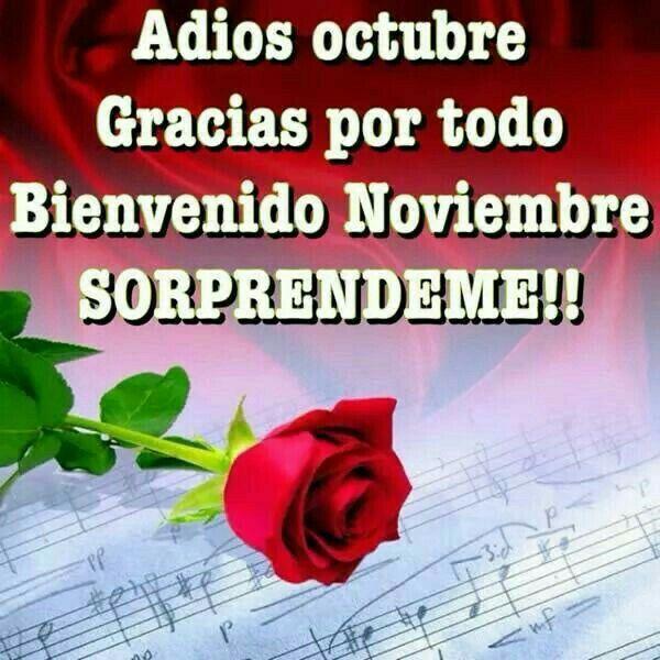 Adios octubre Bienvenido noviembre