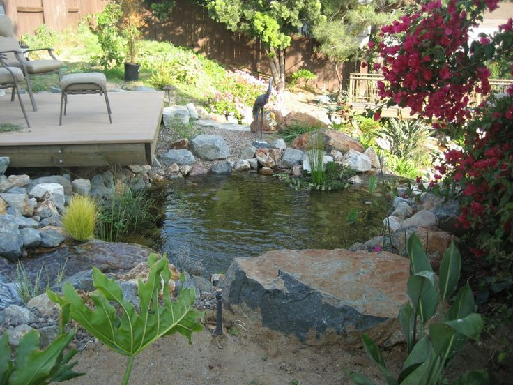17 best images about koi ponds on pinterest small garden for Small koi pond