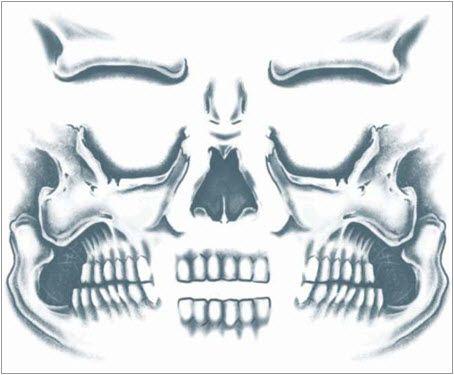 Top Halloween Idea: Skull Facial Temporary Tattoo Kit