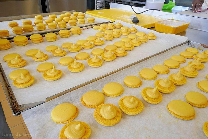 Mango-passievrucht macarons zijn heerlijke frisse amandelkoekjes met een fruit ganache ertussen. Ik geef een uitgebreid en duidelijk recept.