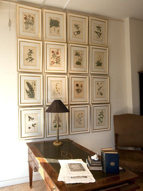 Wall of vintage botanical prints