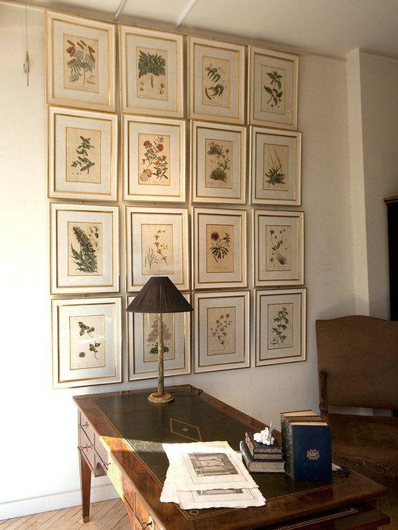 Wall of vintage botanical prints