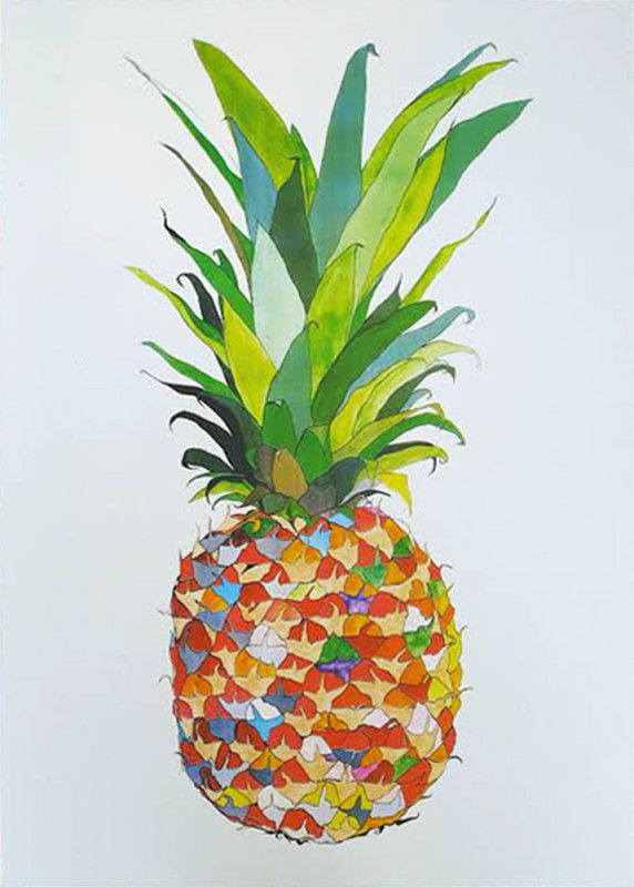 'Pineapple' - Andy Macgregor Beautiful limited edition screen print.