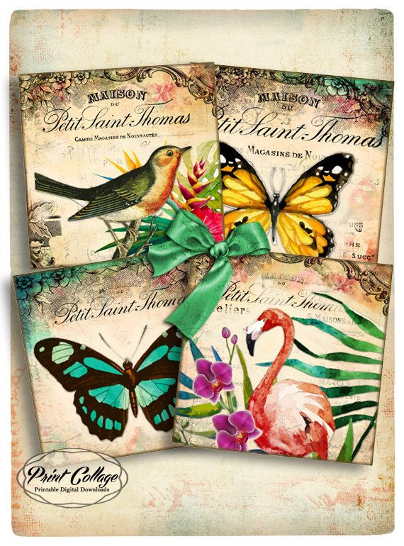 Printable Collage Sheet for Coasters Greeting Cards Magnets Gift tags 4x4 inch Set of 4 Printable Cards Clip Art 4x4 inch - EXOTIC o39 - pinned by pin4etsy.com