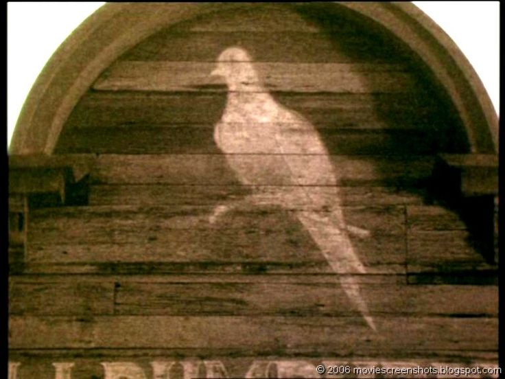 25 best Lonesome dove pics images on Pinterest  Lonesome