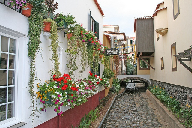 Funchal Old Town  by grahamramsden52, via Flickr Madeira Island, Portugal
