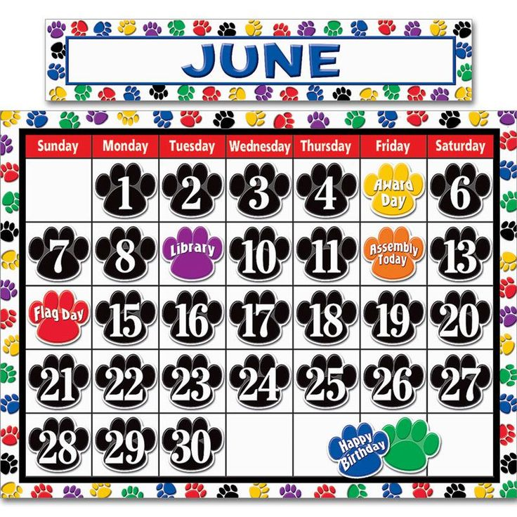 Colorful Paw Prints Calendar Bulletin Board