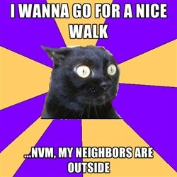 Anxiety Cat - i wanna go for a nice walk ...nvm, my neighbors are outside