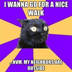 Social Anxiety Cat - Thus why I love walking in the rain. MJC