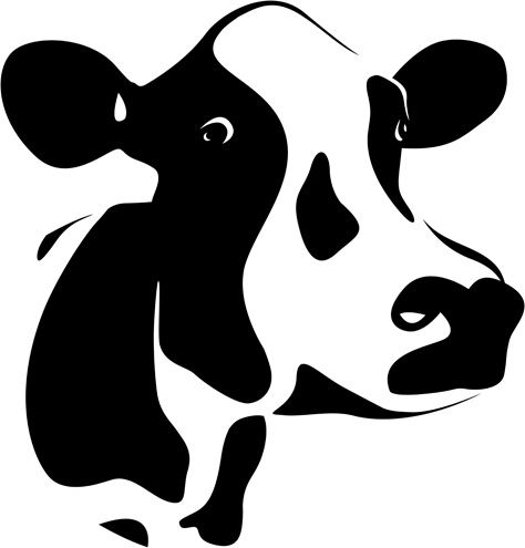 different dairy cow design vector graphics