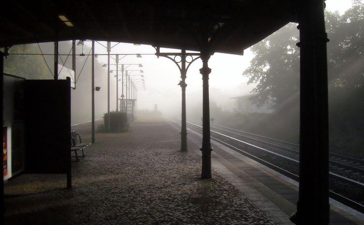 Nebliger Morgen... am S-Bahnhof Schlachtensee 2013