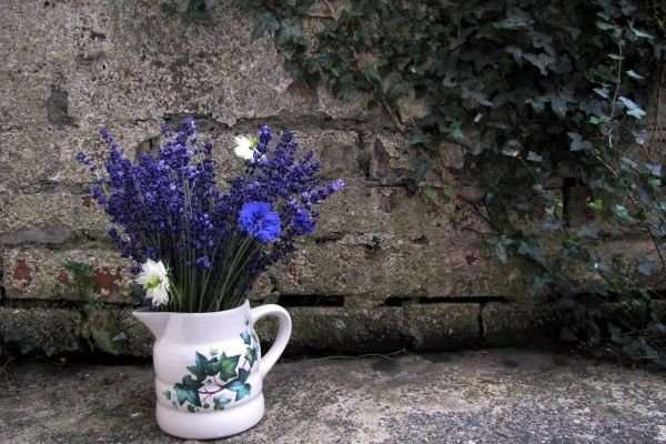 A little jug of Lavender, Cornflower and Nigella