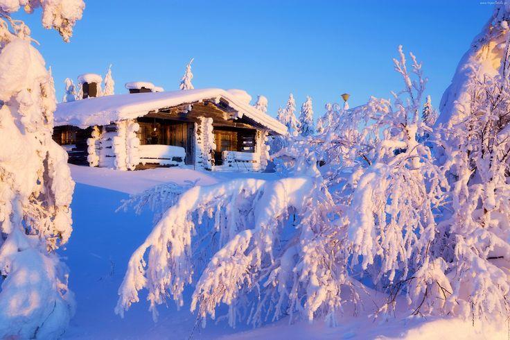 Dom, Ośnieżone, Drzewa, Góry, Zima