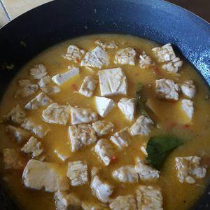 Resep Masakan Vegetarian Opor Tahu Tempe Lezat http://tipsresepmasakanku.blogspot.co.id/2016/09/resep-masakan-vegetarian-opor-tahu.html