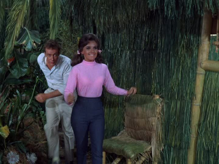 an introduction to the story of giligans island the characters of giligan and the professor Gilligan's island (tv series 1964  thus changing the lyrics to the professor and mary ann  he decided to make the theme a story of how the characters got.