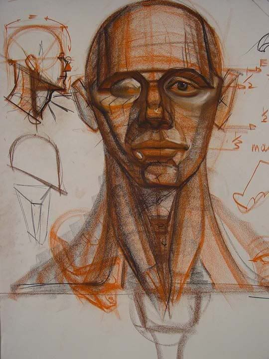 27 best Анатомия Голова images on Pinterest | Anatomy, Anatomy ...