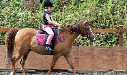 Centre Equestre Régional René Dujardin à Marcq-en-Barœul : Cours équestres pour enfants: #MARCQ-EN-BARŒUL 24.90€ au lieu de 35.00€ (29% de…