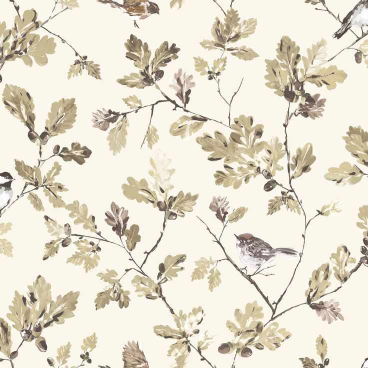 Acorn Trail Brown & Cream Floral Birds Mica Wallpaper | Departments | DIY at B&Q