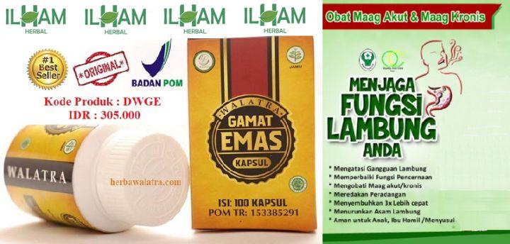 Pin di Obat Herbal Walatra Gamat Emas Kapsul