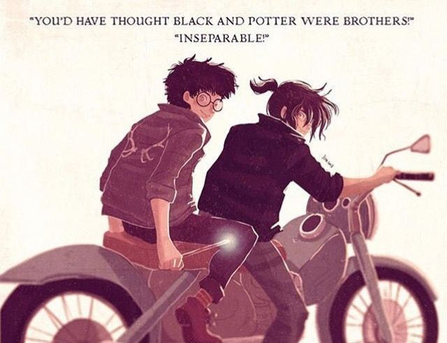 You'd have thought black and Potter were brothers! Inseparable!