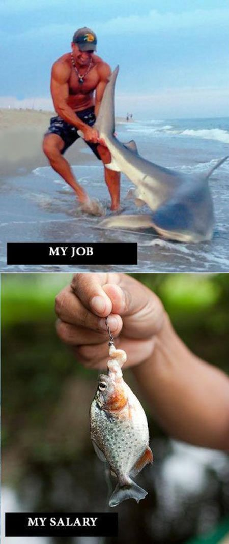 A better understanding of how my job works...