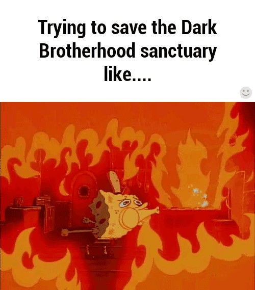 Trying to save the Dark Brotherhood like....this is not funny...but I laughed...
