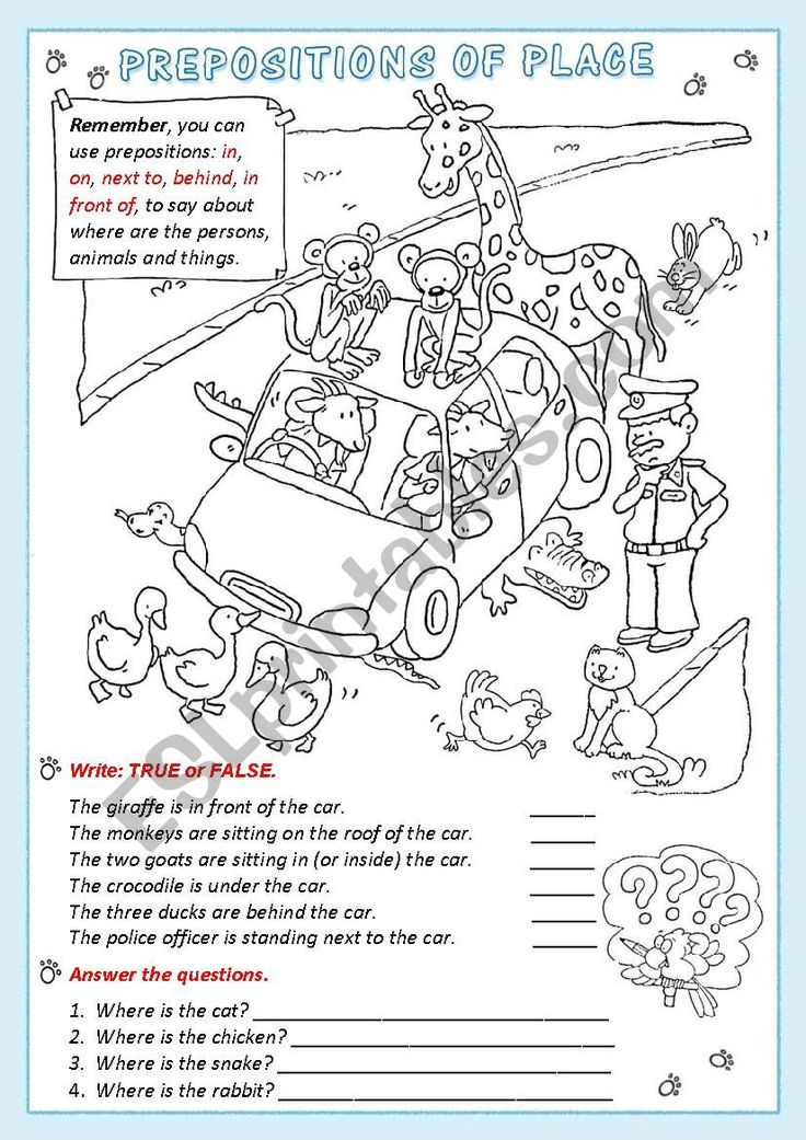 A cute worksheet to practice the prepositions of place
