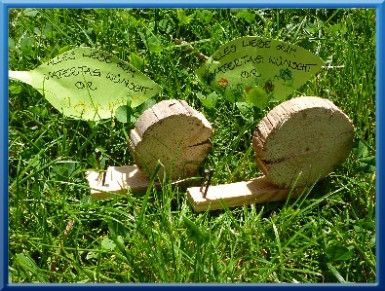 Holz Schnecke