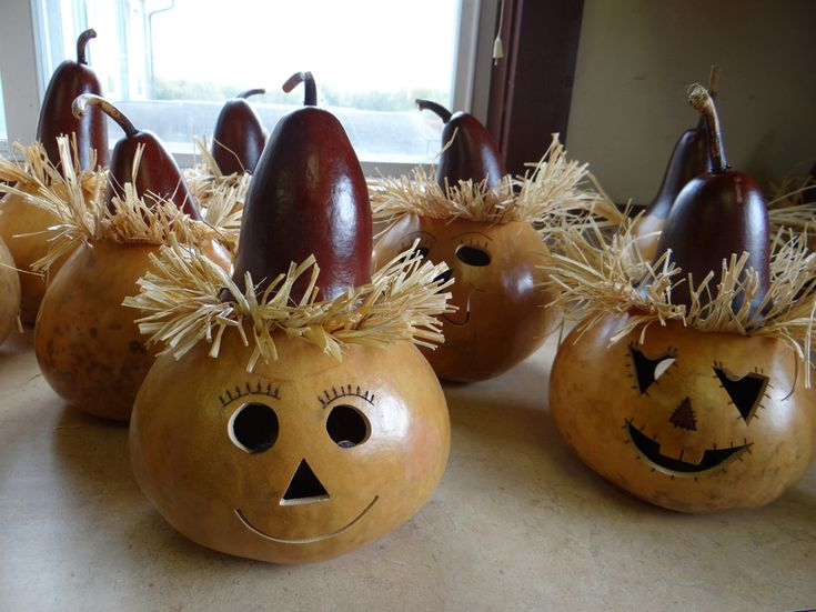 Best 25 gourds ideas on pinterest painted gourds gourd for Where to buy gourds for crafts