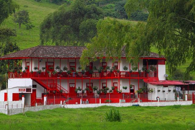 Coffee farm, Quindío, Colombia