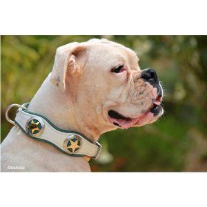 Hundehalsband mit Westernconchos nach Kundenwunsch gefertigt