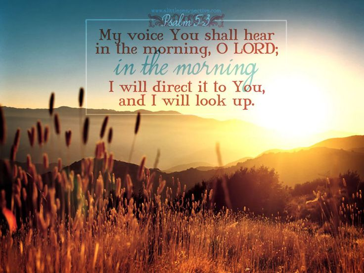 My voice You shall hear in the morning, O LORD; in the morning I will direct it to You, and I will look up. Psalm 5:3
