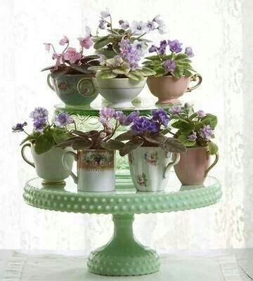 African violets in teacups aranged on a cake pedestal.