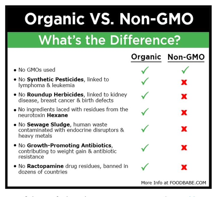 Food Babe Difference Gmo Organic