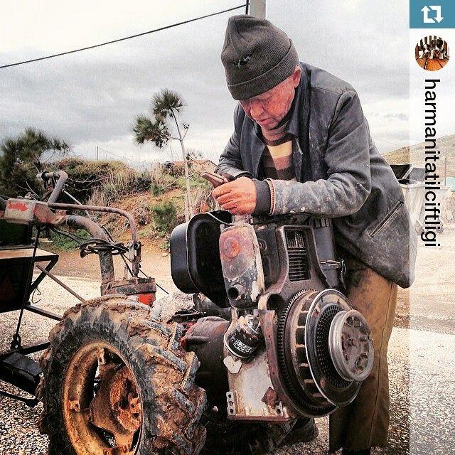 Adalılar -3- Halil Acar adacafebozcaada's photo on Instagram