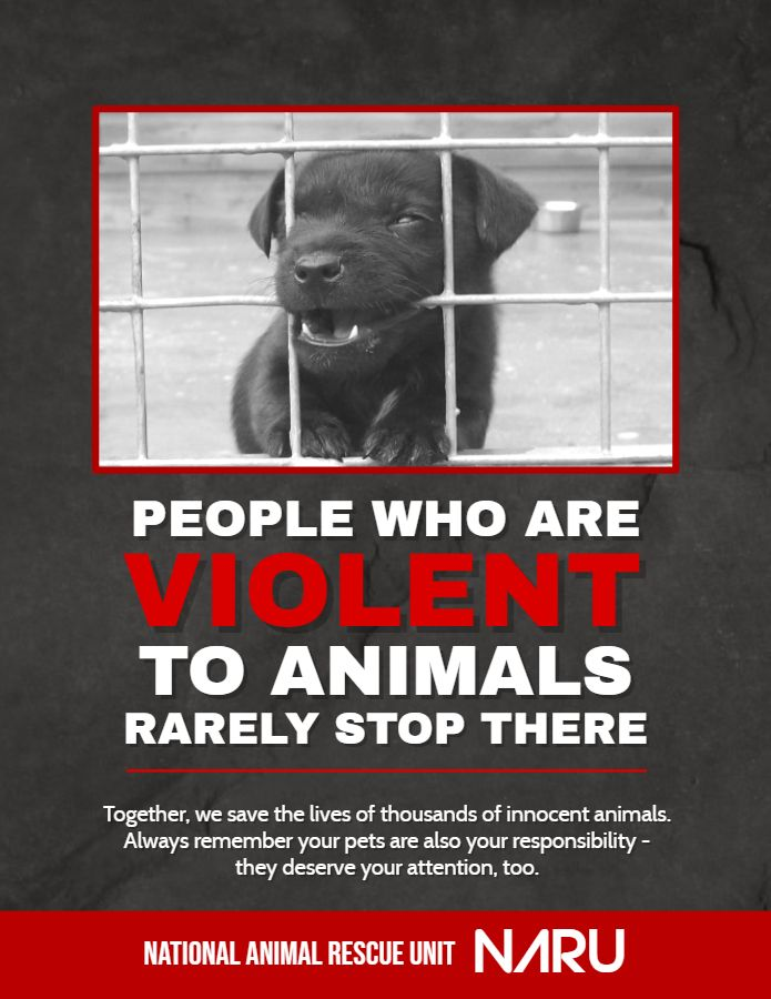 Stop Animal Cruelty And Rights Poster Template Poster Template Campaign Posters Awareness Campaign