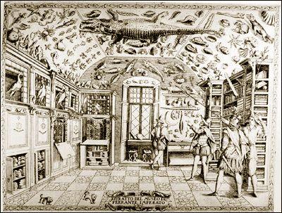 Anonyme Le cabinet de Ferrante Imperato à Naples 1672, gravure, Bibliothèque Estense, Modène.