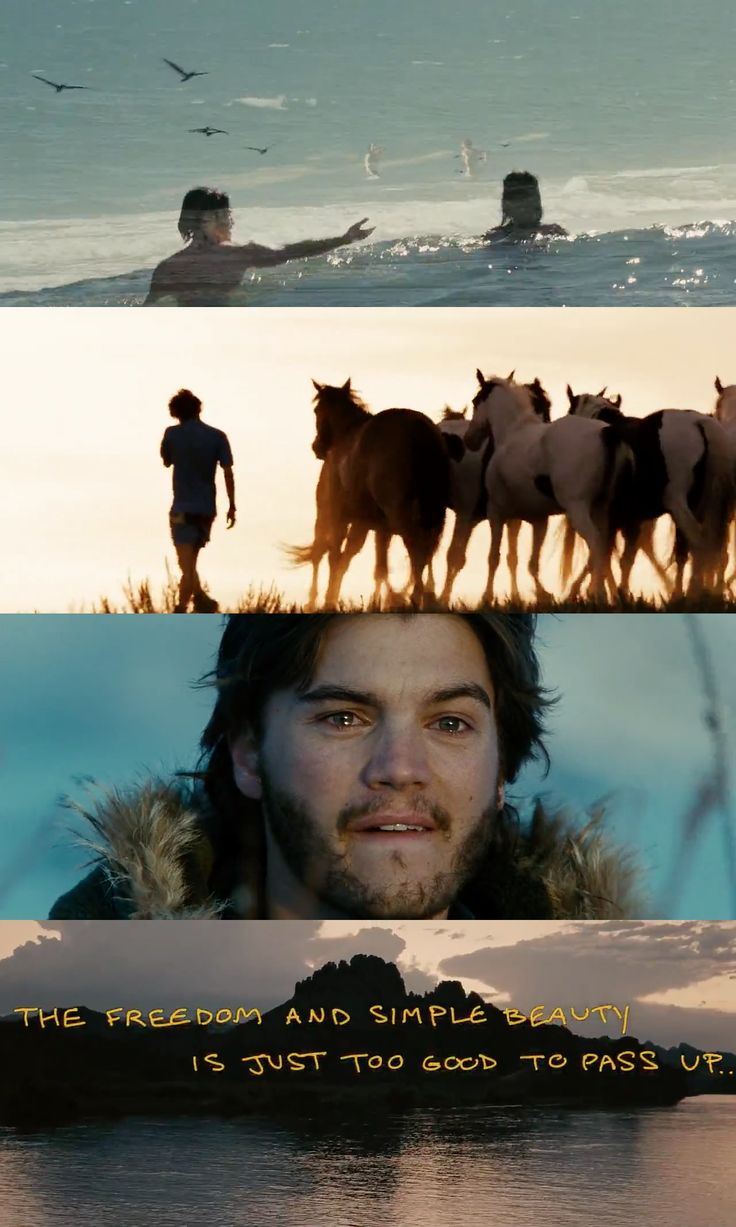 Into the Wild (2007)  #travalour #travelMovies #intoTheWild