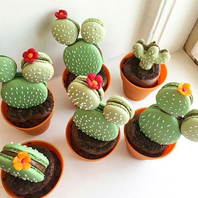 Cactus cupcakes - so cute