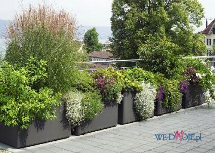 #nowoczesne ogrody #modern garden