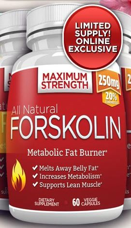 All Natural Forskolin is an advanced natural dietary supplement that promotes weight loss in a safe manner. How does Forskolin work?