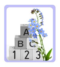 Infant Mortality Forget-me-not flower and baby blocks.Unfortunately, about 24,000 infants died in the United States in 2011.