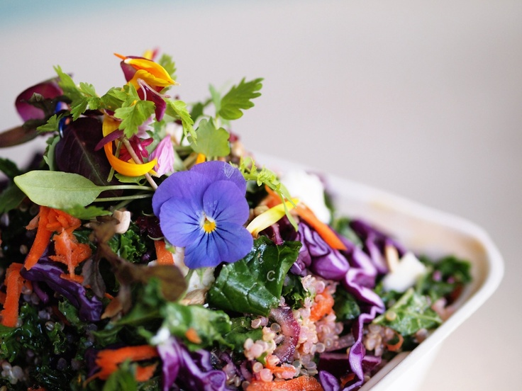 Kale quinoa salad - Fuchsia Epicerie Fleur