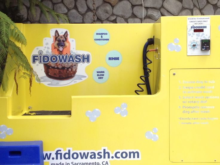 10 best dog wash images on pinterest dog wash dog grooming coin operated dog wash made in sacramento ca solutioingenieria Images
