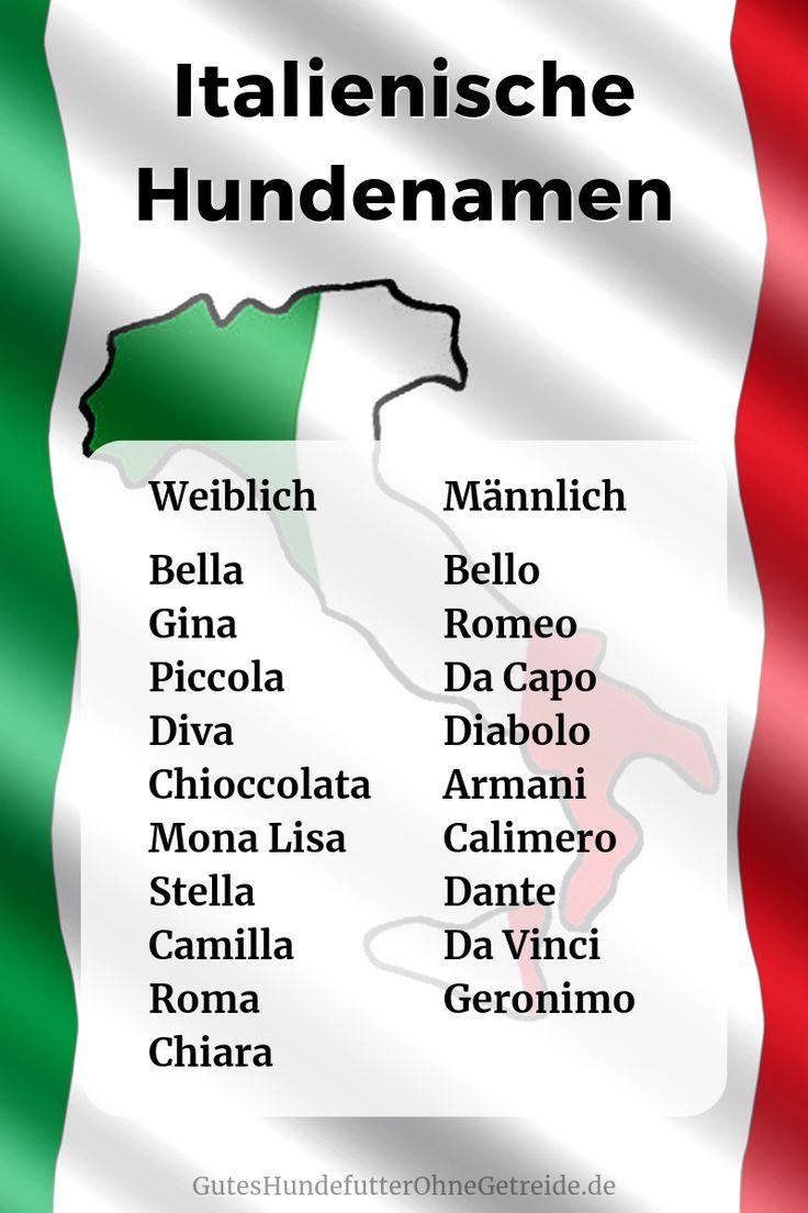 169 Italienische Hundenamen: weiblich/männlich mit